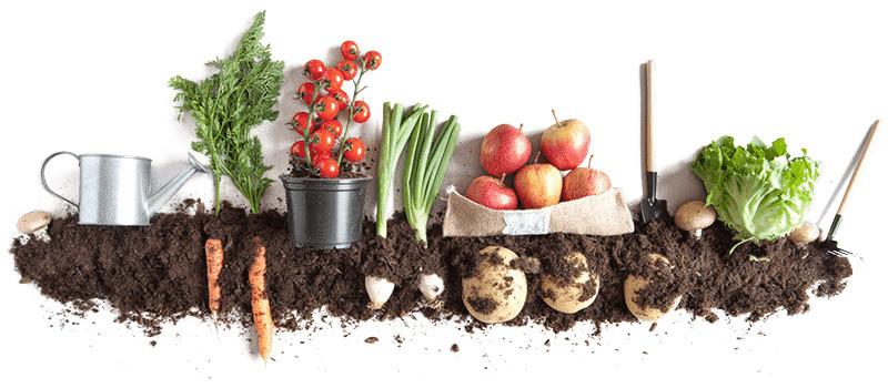Samp-kompost-header