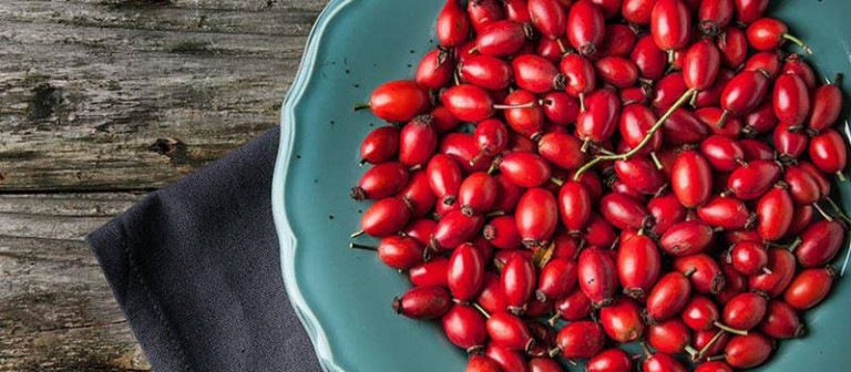 Angies-rosehips-header